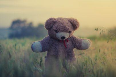Teddy Bears Picnic theme