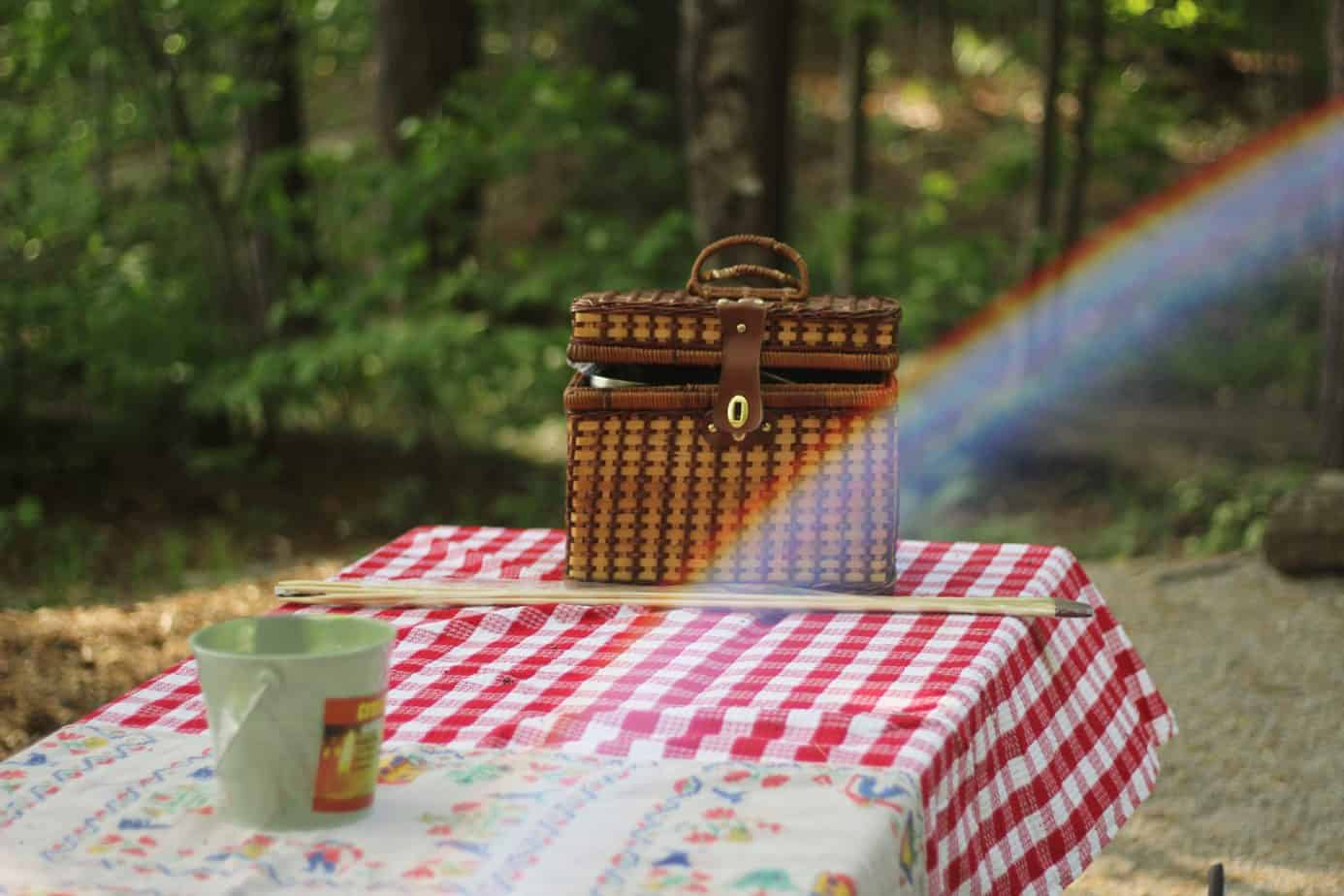 Top Tips for a successful quick picnic