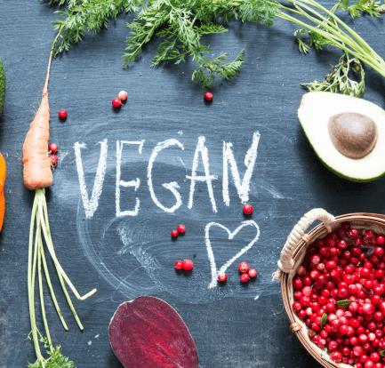 Best Vegan Picnic Food Ideas
